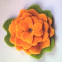 petunia mandarina