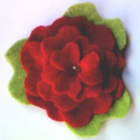 petunia roja